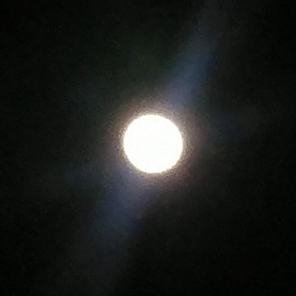 月の光おくり