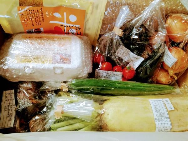 お野菜が届きました。
